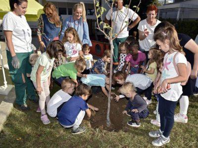 Mališani iz splitskog vrtića uključili se u veliku ekološku akciju: 'Posadiš stablo i daš mu bombončiće da naraste!'